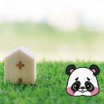生命保険の基本的な役割と種類